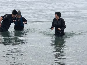 Polar Plunge For Special Olympics BC - March 11 at Willows Beach